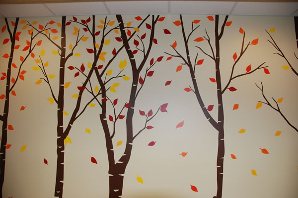 Walnut Creek Pediatric Dentistry fall forest